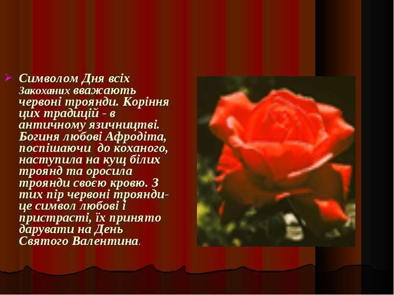 Символом Дня всіх Закоханих вважають червоні троянди. Коріння цих традицій - ...