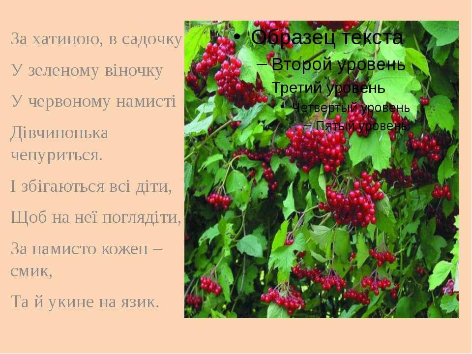 За хатиною, в садочку У зеленому віночку У червоному намисті Дівчинонька чепу...