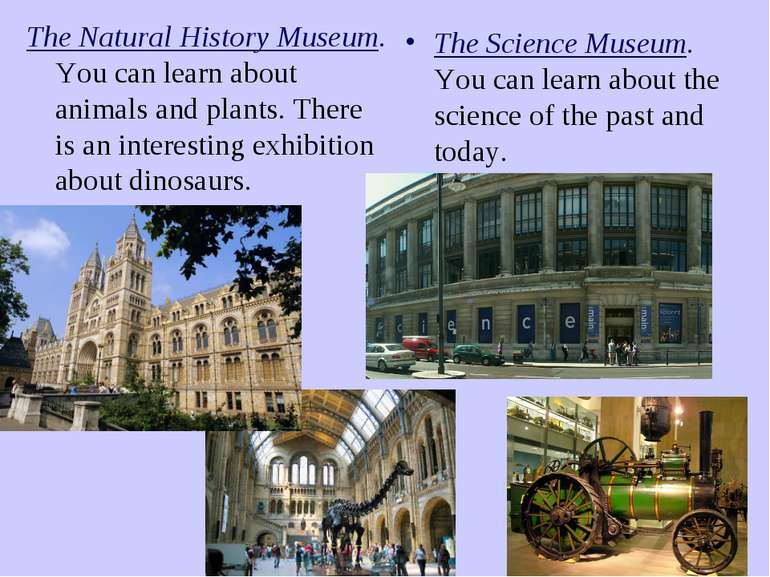 The Natural History Museum. You can learn about animals and plants. There is ...