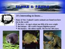 It's interesting to know… Many of New Zealand's native animals are found nowh...