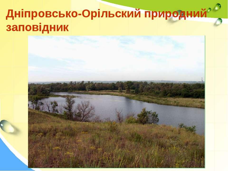 Дніпровсько-Орільский природний заповідник