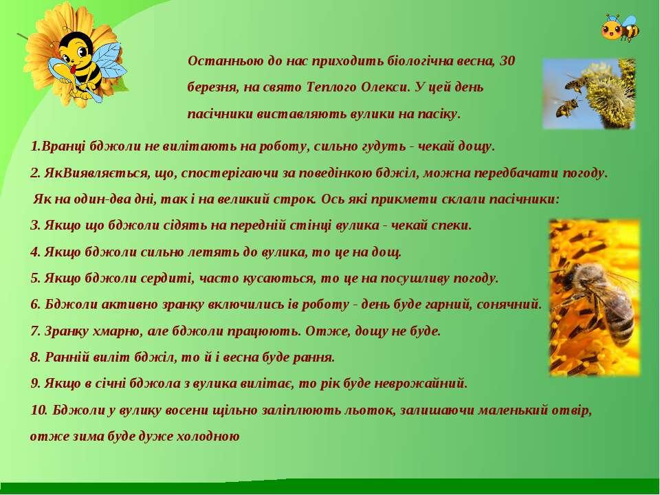 Останньою до нас приходить біологічна весна, 30 березня, на свято Теплого Оле...
