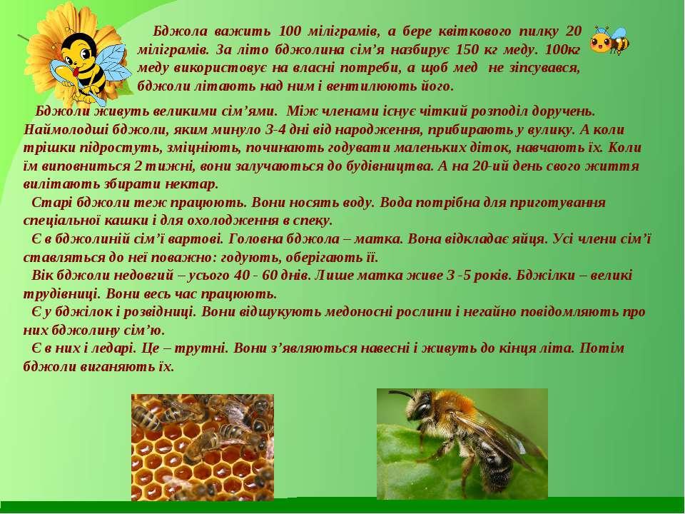 Бджола важить 100 міліграмів, а бере квіткового пилку 20 міліграмів. За літо ...