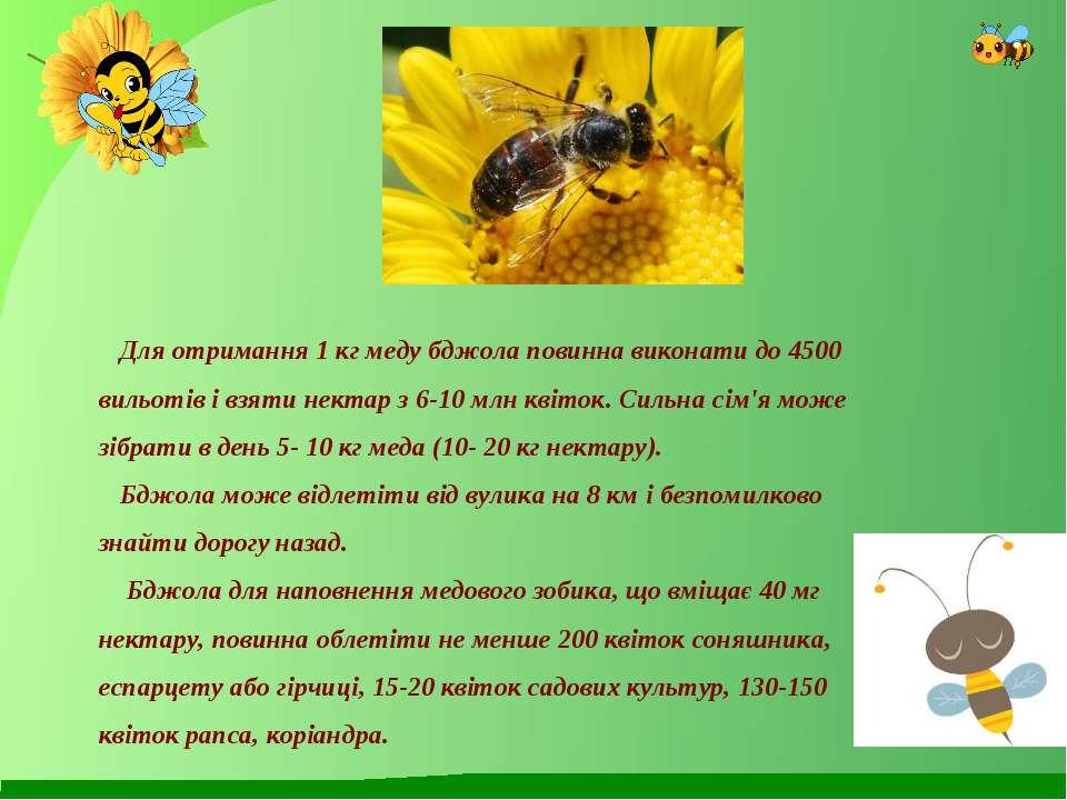 Для отримання 1 кг меду бджола повинна виконати до 4500 вильотів і взяти нект...