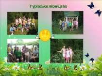 Гурівське лісництво
