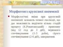 Морфогенез крупозної пневмонії Морфологічні зміни при крупозній пневмонії заз...