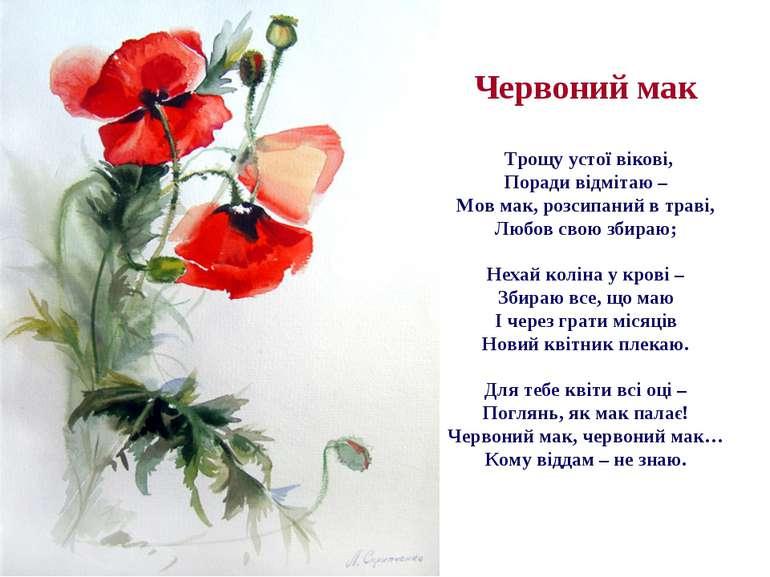 Червоний мак Трощу устої вікові, Поради відмітаю – Мов мак, розсипаний в трав...