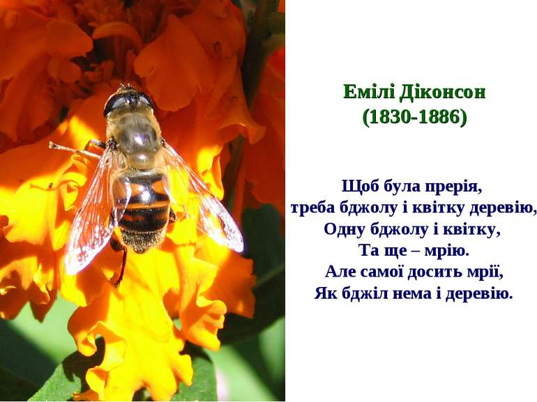 Емілі Діконсон (1830-1886) Щоб була прерія, треба бджолу і квітку деревію, Од...