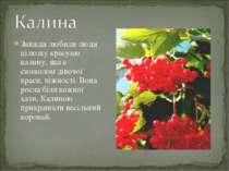 Завжди любили люди цілющу красуню калину, яка є символом дівочої краси, ніжно...