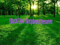 """Black Sea Biosphere Reserve"""
