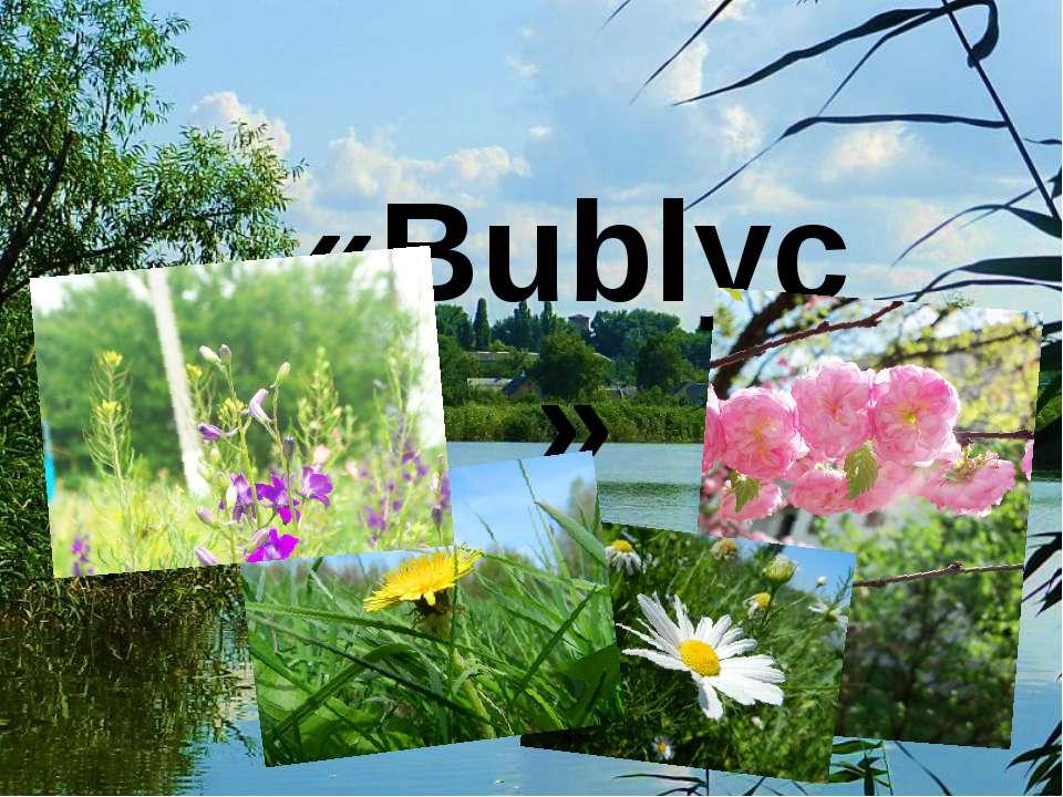 «Bublyc»