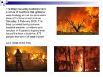 The Black Saturday bushfires were a series of bushfires that ignited or were ...