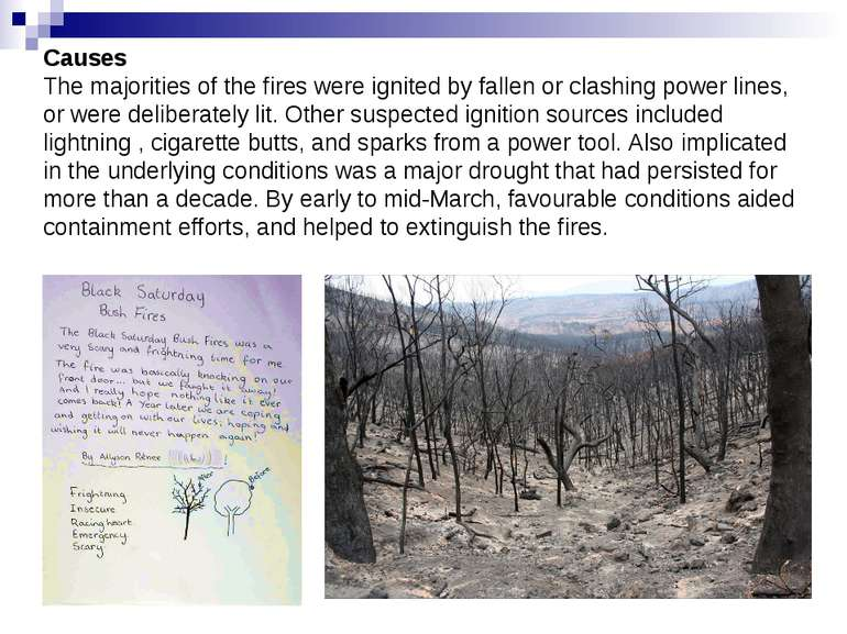 Causes The majorities of the fires were ignited by fallen or clashing power l...
