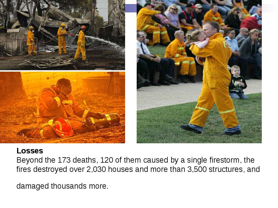Losses Beyond the 173 deaths, 120 of them caused by a single firestorm, the f...
