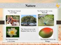 Nature The National Animal The National Bird is the is the Tiger. Peacock. Th...