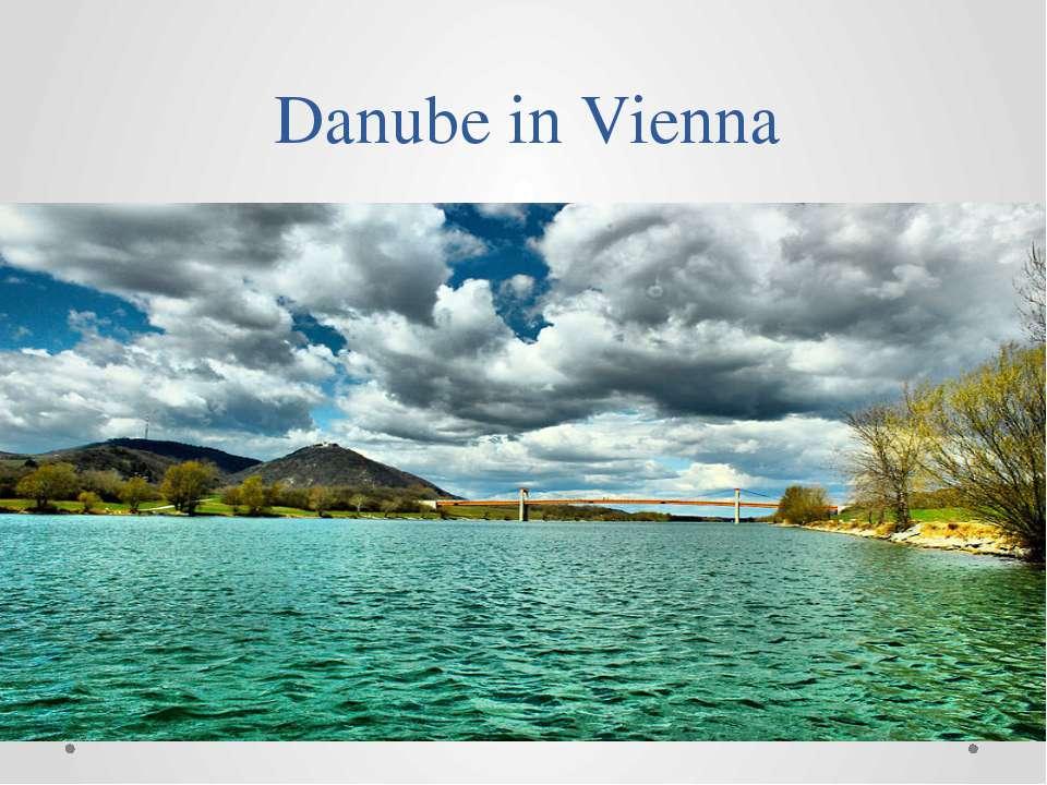 Danubein Vienna