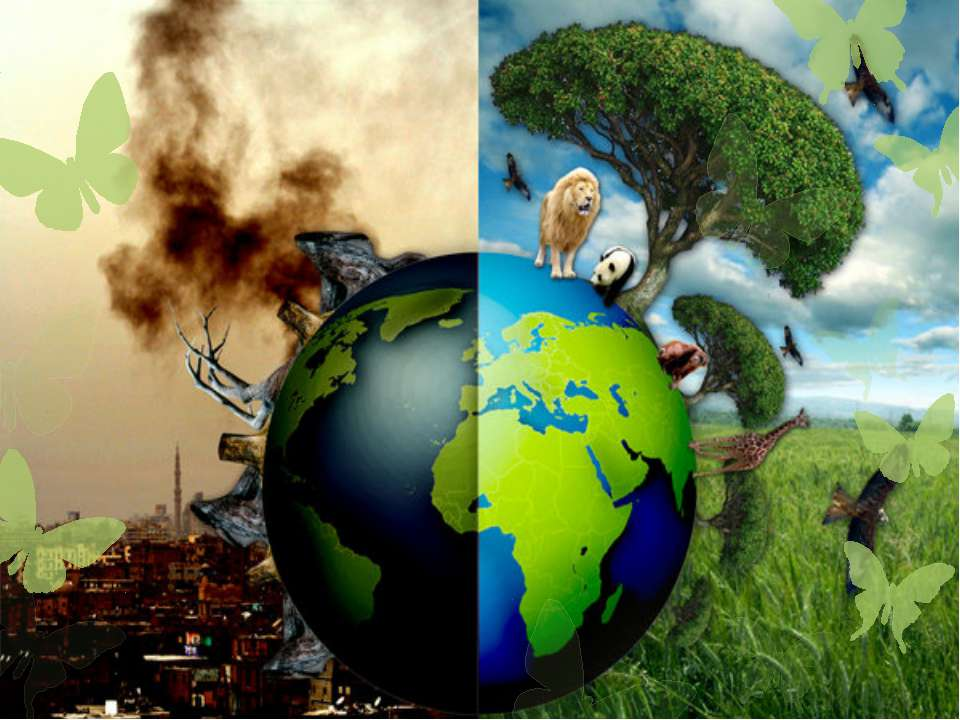 a planet without trees a nightmare or our future essay