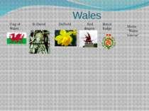 "Wales Flag of Wales St.David Daffodil Red dragon Royal badge Motto ""Wales for..."