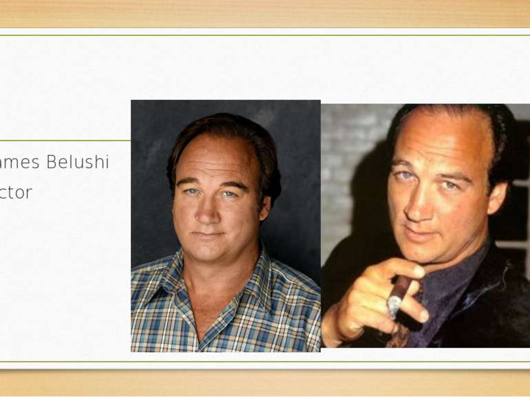 James Belushi actor