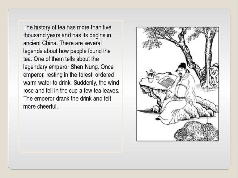 The history of tea has more than five thousand years and has its origins in a...