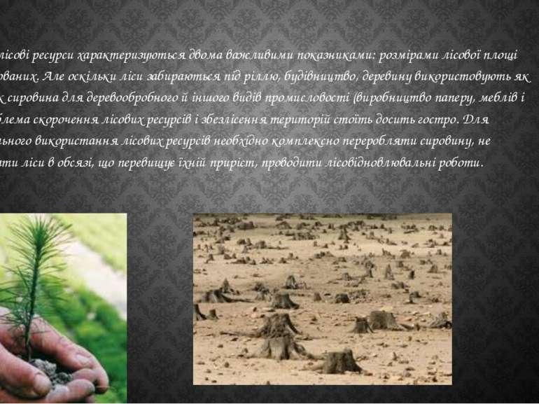 Світові лісові ресурси характеризуються двома важливими показниками: розмірам...