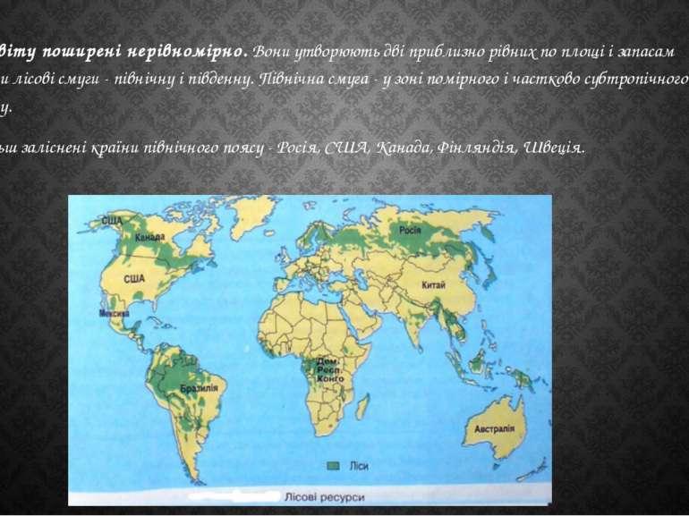 Ліси світу поширені нерівномірно.Вони утворюють дві приблизно рівних по площ...