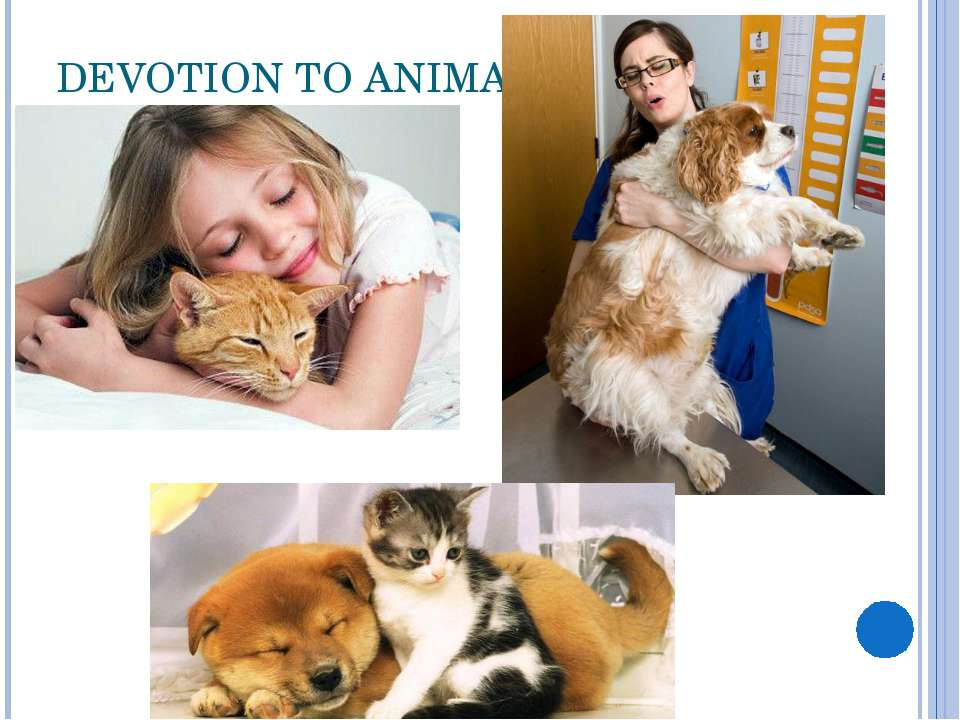 DEVOTION TO ANIMALS