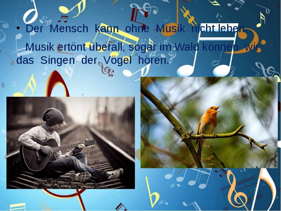 Der Mensch kann ohne Musik nicht leben. Musik ertönt überall, sogar im Wald k...