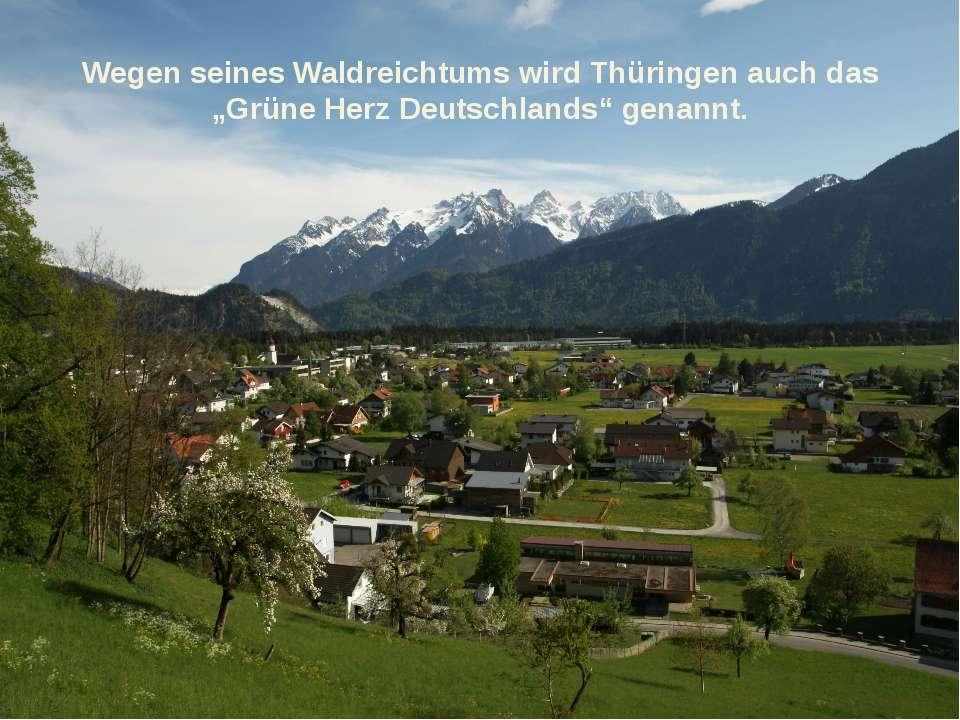 """Wegen seines Waldreichtums wird Thüringen auch das """"Grüne Herz Deutschlands"""" ..."""