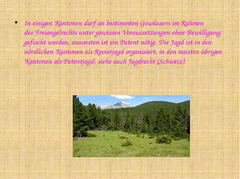 In einigen Kantonen darf an bestimmten Gewässern im Rahmen desFreiangelrecht...