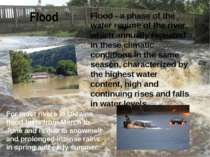Flood Flood - a phase of the water regime of the river, which annually repeat...