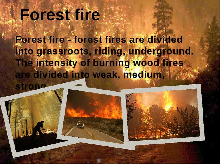 Forest fire Forest fire - forest fires are divided into grassroots, riding, u...