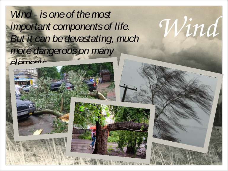 Wind Wind - is one of the most important components of life. But it can be de...