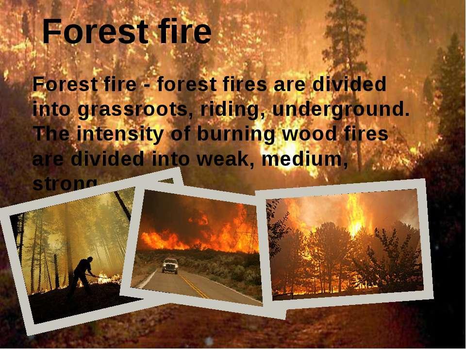 Forest fire Forest fire - forest fires are divided into grassroots, riding, u...