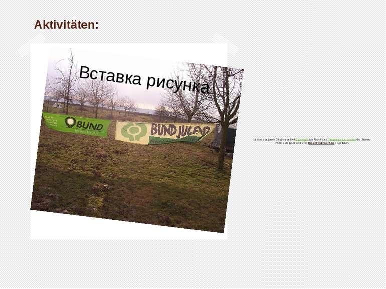 Aktivitäten: Verbandseigene Obstwiese bei Otzenratham Rand desTagebaus Garz...