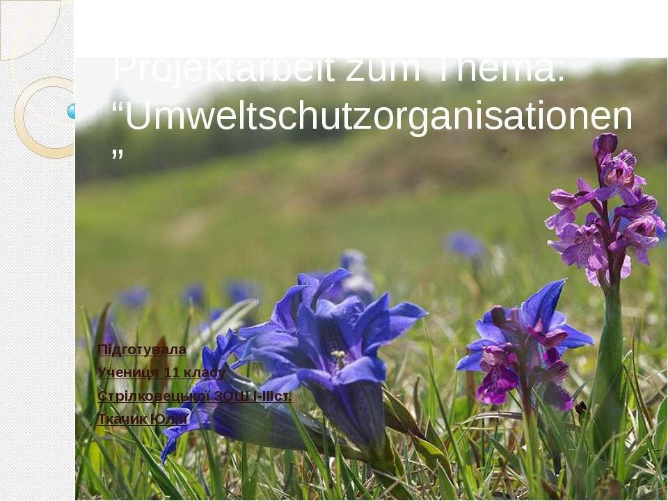 """Projektarbeit zum Thema: """"Umweltschutzorganisationen"""" Підготувала Учениця 11 ..."""
