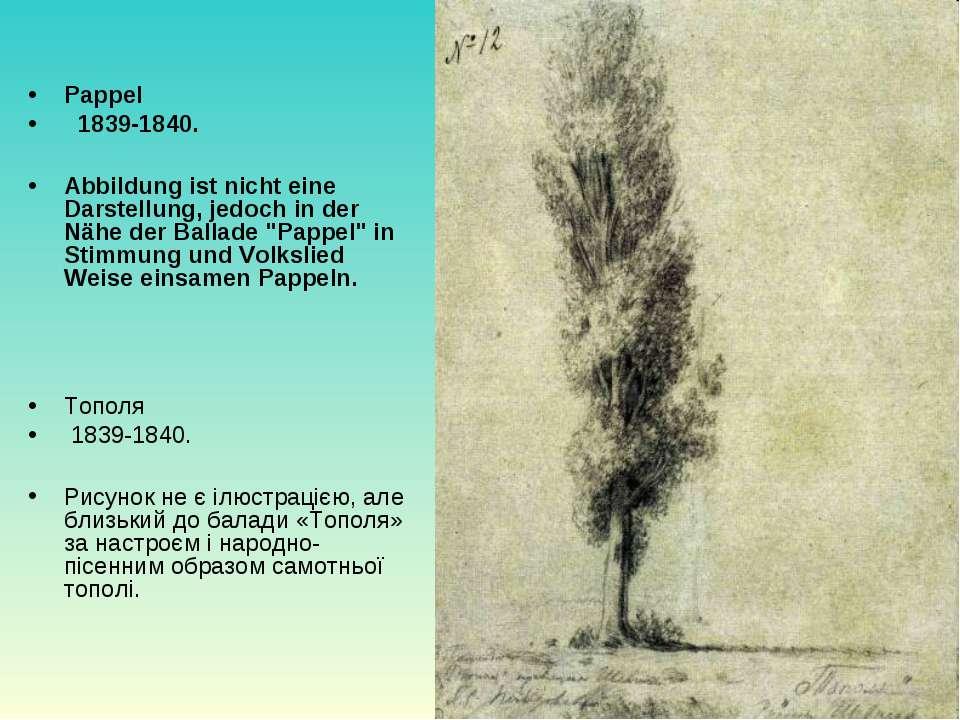 Pappel  1839-1840. Abbildung ist nicht eine Darstellung, jedoch in der Nähe ...