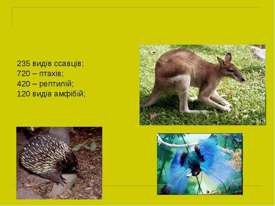 235 видів ссавців; 720 – птахів; 420 – рептилій; 120 видів амфібій;