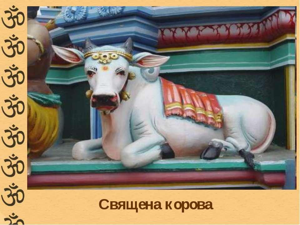 Священа корова
