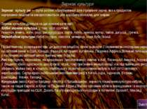 Зернові культури Зернові культу ри— групарослин, оброблюваних для отримання...