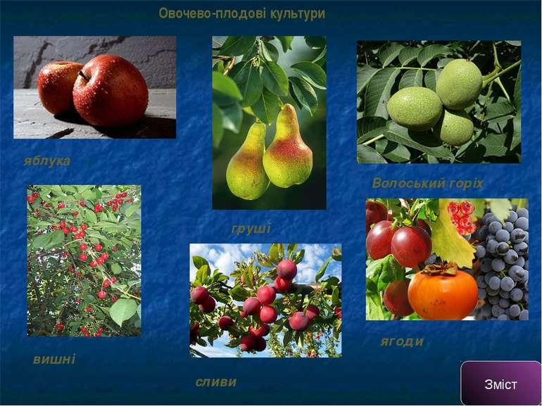 Овочево-плодові культури яблука груші вишні сливи ягоди Волоський горіх Зміст