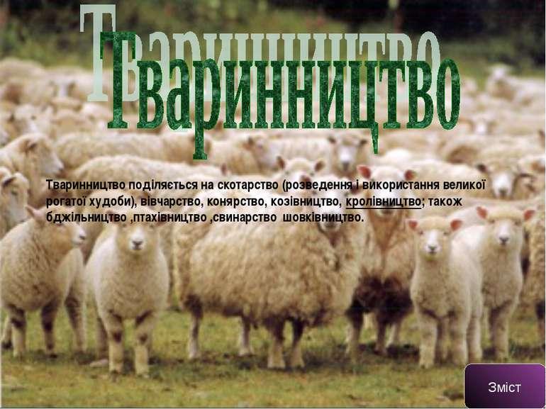Тваринництво поділяється наскотарство(розведення і використаннявеликої рог...