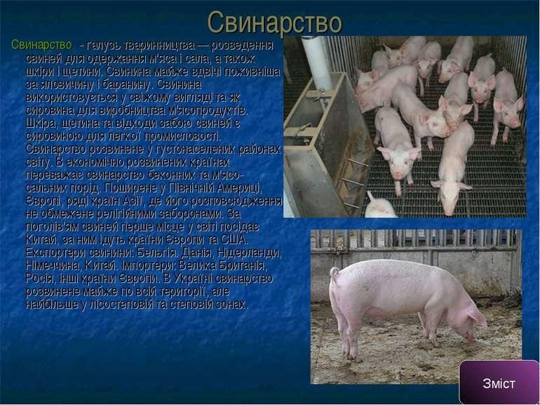 Свинарство Свина рство- галузь тваринництва — розведення свиней для одержанн...