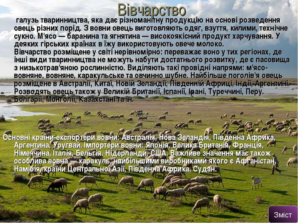Вівчарство галузь тваринництва, яка дає різноманітну продукцію на основі розв...