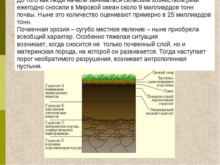 До того как люди начали заниматься сельским хозяйством,реки ежегодно сносили ...