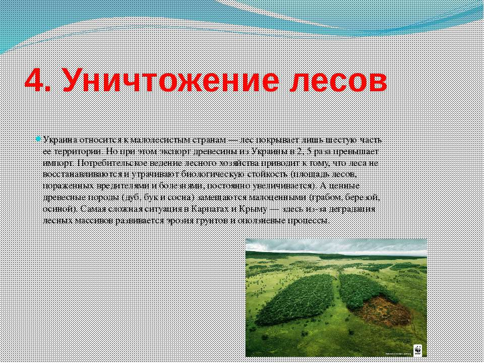 4. Уничтожение лесов Украина относится к малолесистым странам— лес покрывает...