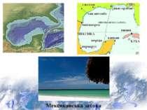 Мексиканська затока