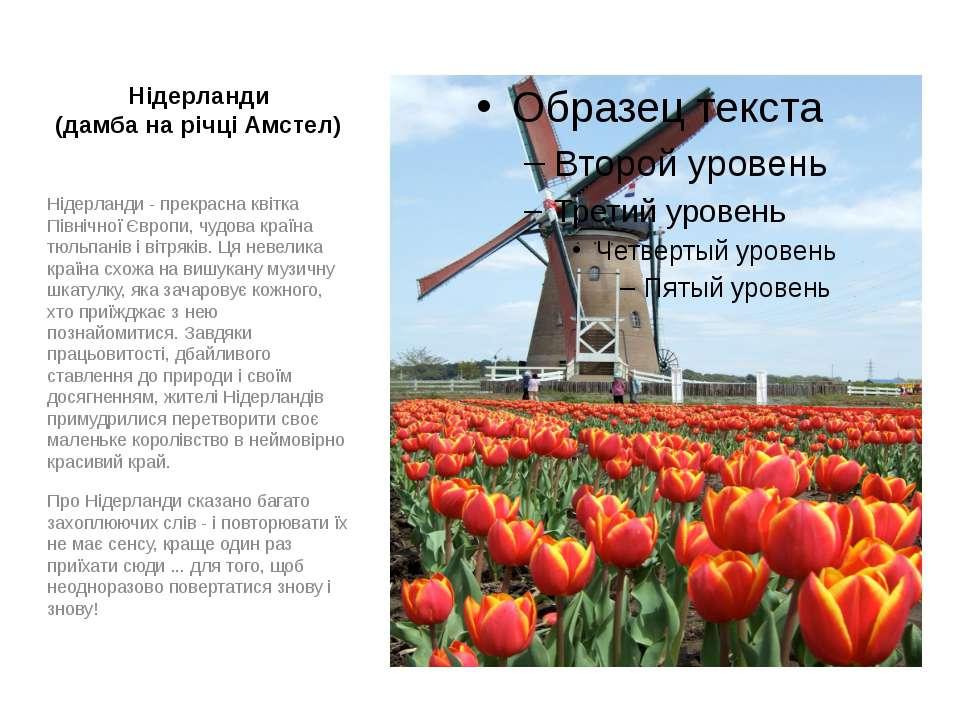 Нідерланди (дамба на річці Амстел) Нідерланди - прекрасна квітка Північної Єв...