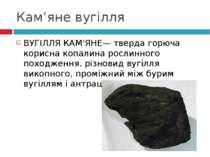 Кам'яне вугілля ВУГІЛЛЯ КАМ'ЯНЕ— тверда горюча корисна копалина рослинного по...