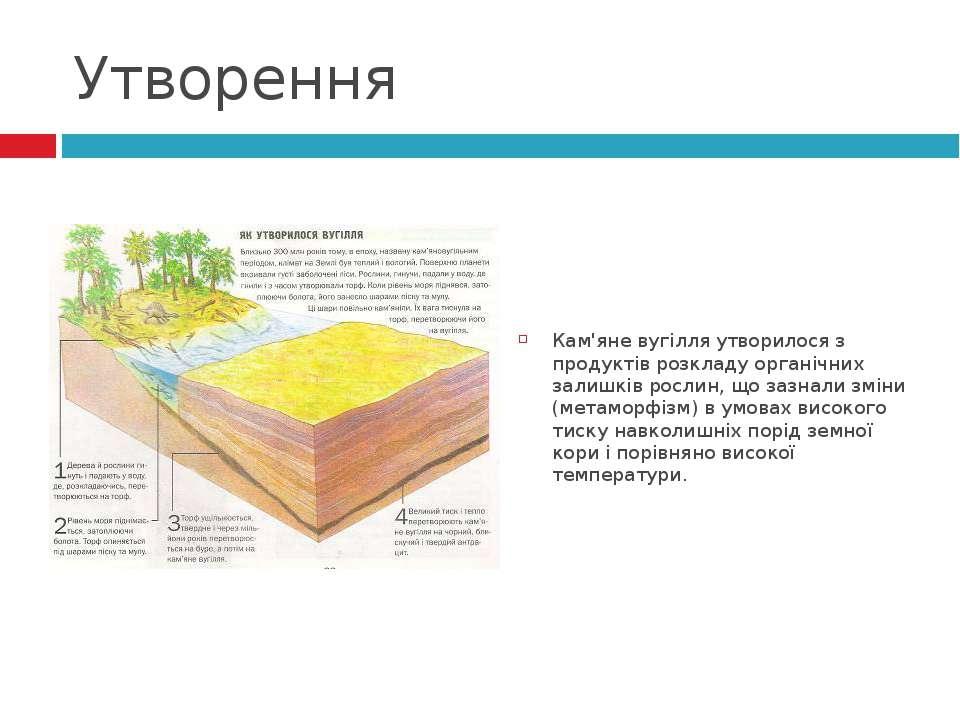 Утворення Кам'яне вугілля утворилося з продуктів розкладу органічних залишків...